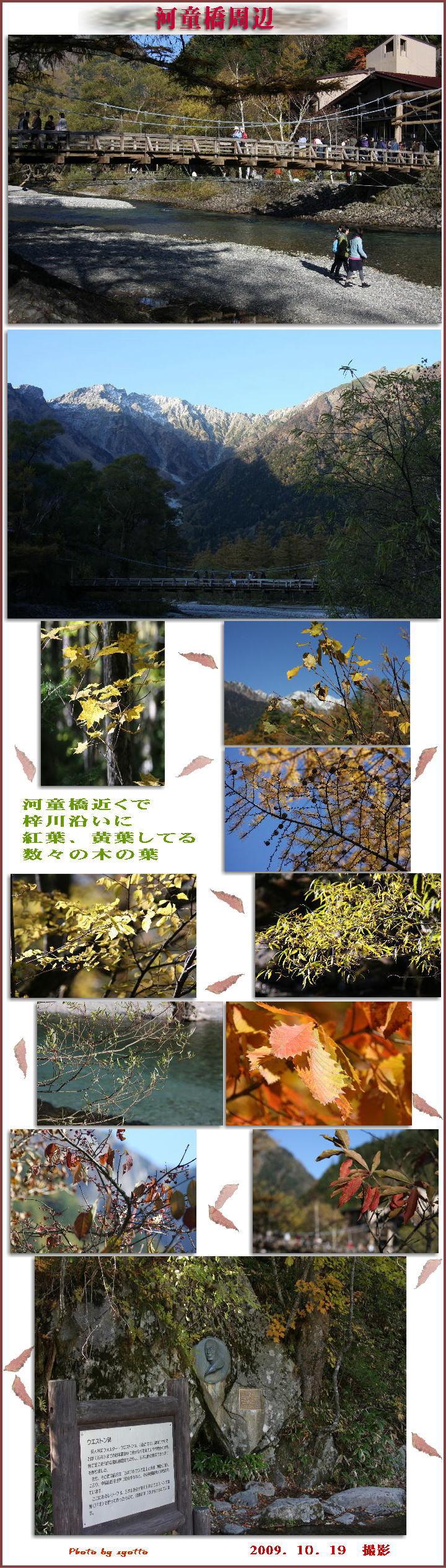 f0164592_819551.jpg