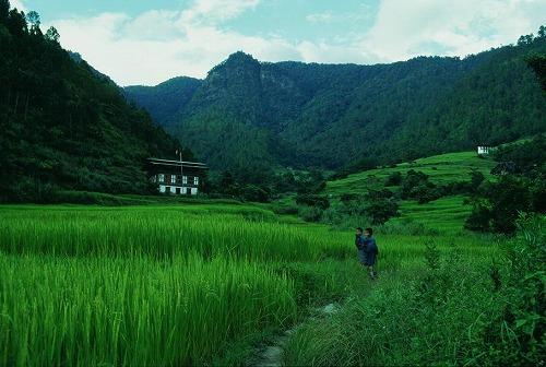 ブータンの農村_c0124100_1658428.jpg