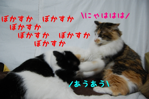 c0181639_23382933.jpg