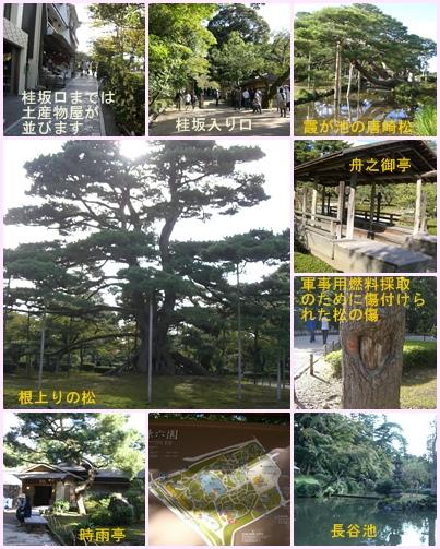 金沢観光 長町武家屋敷跡から金沢城公園と兼六園_a0084343_15444067.jpg