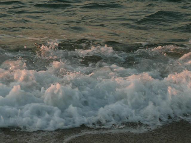 海辺にて_f0099147_0372184.jpg