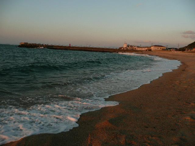 海辺にて_f0099147_037439.jpg