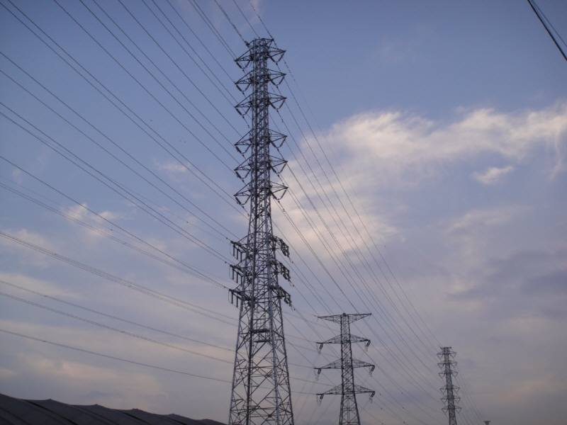 高圧鉄塔とムクドリ_f0059673_722433.jpg