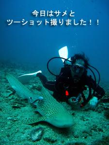 綺麗!!旬なピピ島♪_f0144385_23484554.jpg