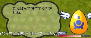 b0182599_9152724.jpg