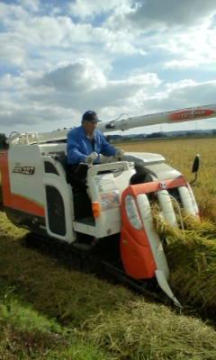 明日で稲刈り終了です。_d0026905_13553440.jpg