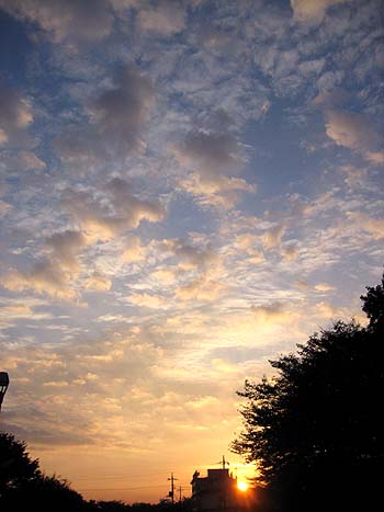 朝焼けの中で、地形変わる_e0023517_2172484.jpg