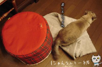 ぷりんのマイブーム復活!_e0031853_22193531.jpg