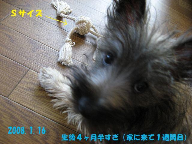 c0202659_22311341.jpg