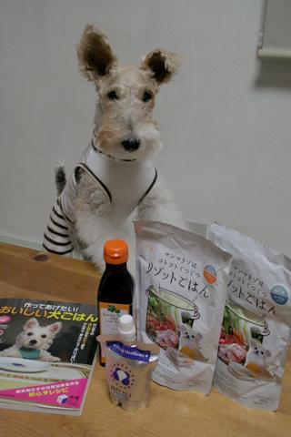 愛犬のための食事セミナーに行ってきました_c0070377_2361581.jpg