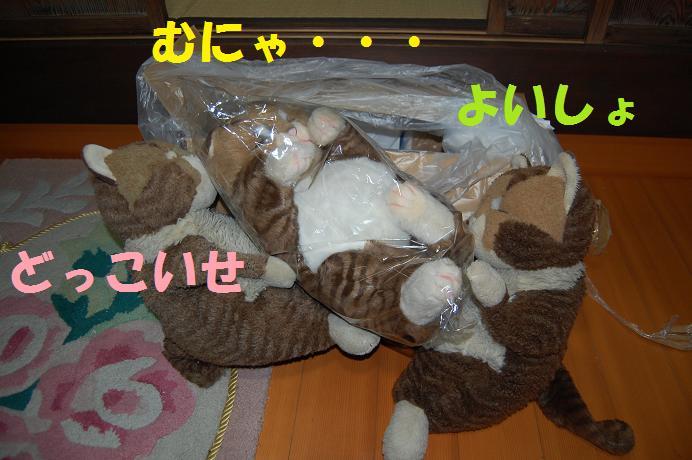 b0059978_221423.jpg