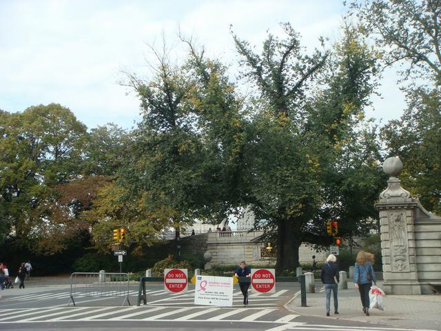 五番街は90丁目あたりもMuseumだらけ、_d0100880_20374785.jpg