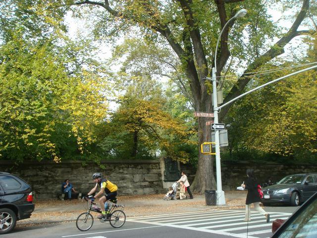 五番街は90丁目あたりもMuseumだらけ、_d0100880_20383460.jpg