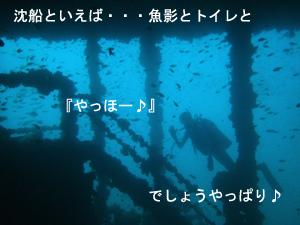 潜水万歳!_f0144385_21474328.jpg