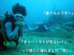 潜水万歳!_f0144385_21482895.jpg