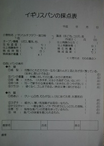c0050906_20104646.jpg
