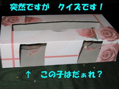 b0158061_20375120.jpg