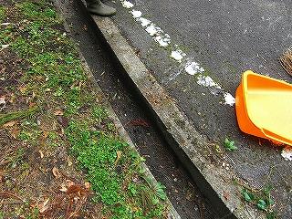 境内清掃 (10月25日)_b0123970_124132100.jpg