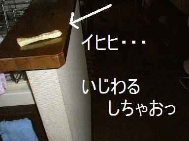 c0205806_15264694.jpg