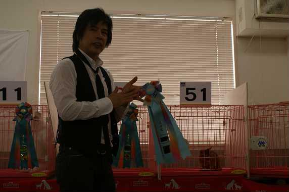 TICA AJC キャットショー@うきょう君デビュー_e0033609_1614546.jpg