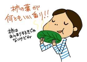 柿の葉寿司@ニッタ亭_c0161724_21371969.jpg