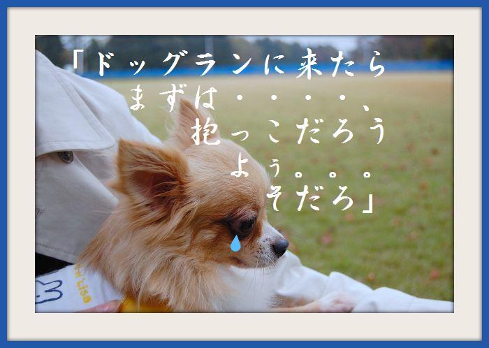 b0112758_217324.jpg
