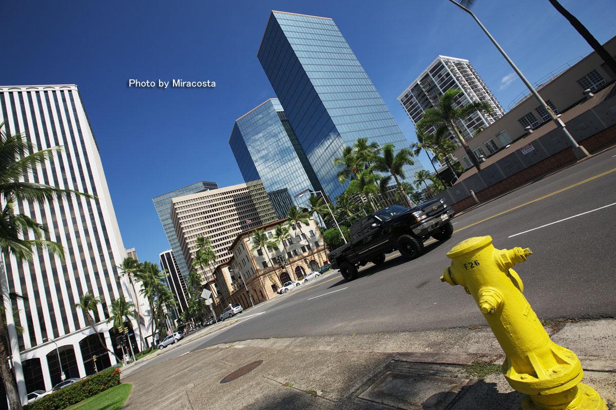 Yellow -World of 16 in Hawaii-_e0140159_22464698.jpg