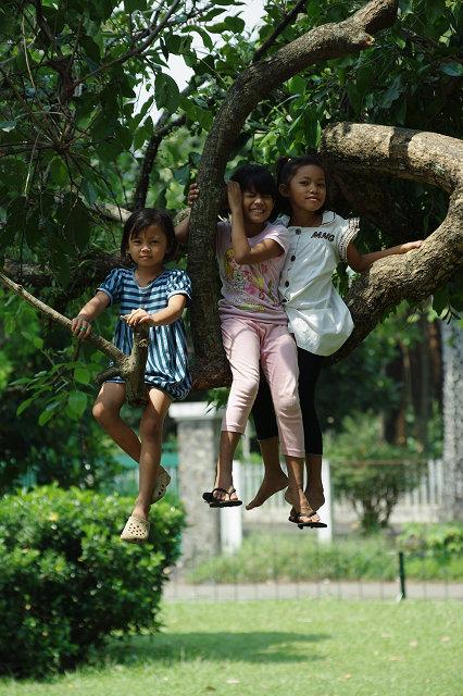 そのうちに枝の先の方に移動しようとするので、私はヒヤヒヤ。Dilaは勇気... 日曜の午後は天使