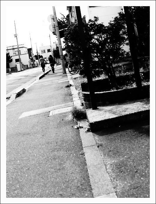 道_c0170584_20304651.jpg