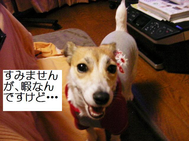 c0214384_1875484.jpg