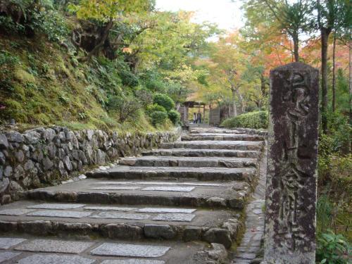嵐山紅葉しかかってます。_f0201289_96423.jpg