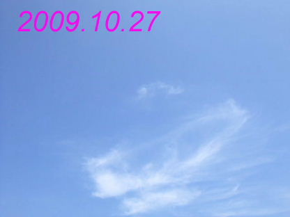 e0074192_1730222.jpg