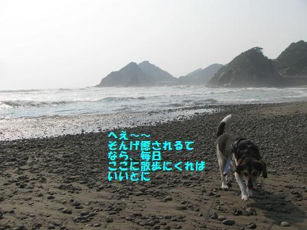 d0104209_2157372.jpg