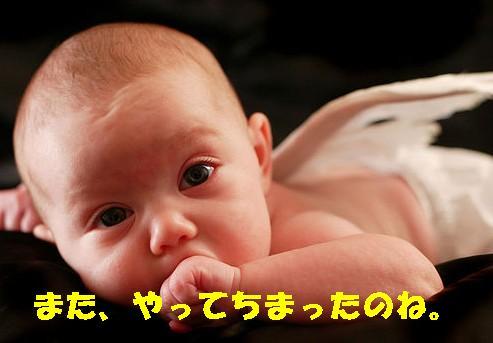 a0100240_10414196.jpg