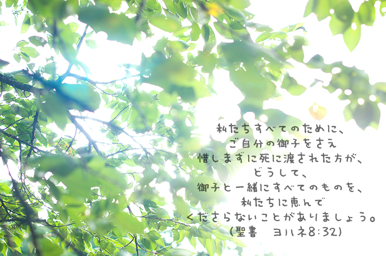 a0057348_22515130.jpg