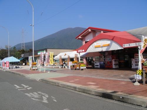 岬町淡輪へ帰ってきました_c0108460_19204263.jpg