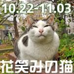 e0149960_22181027.jpg