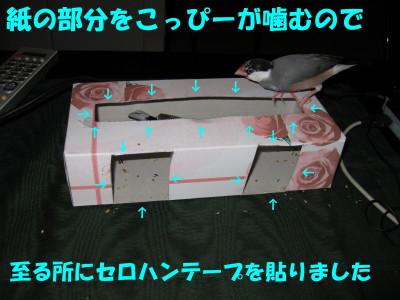b0158061_20304987.jpg
