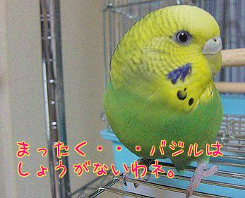 f0196665_23531820.jpg
