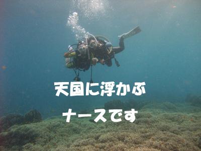 d0086871_2031507.jpg