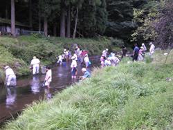 静原小学校主催「川の生き物と水質調べ」に参加_e0008880_21323789.jpg