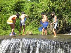 静原小学校主催「川の生き物と水質調べ」に参加_e0008880_21324994.jpg