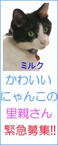 f0197682_2250951.jpg