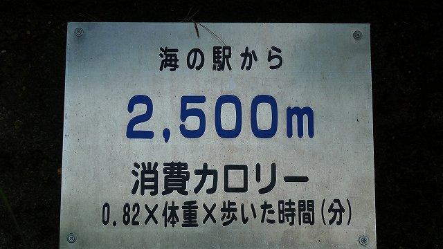 b0115085_14124526.jpg