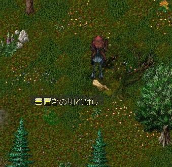 b0096491_1574611.jpg