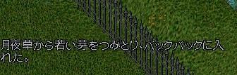 b0096491_339287.jpg