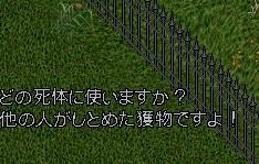 b0096491_34175.jpg