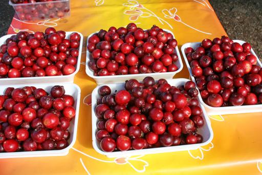 ストロベリーグァバの果実