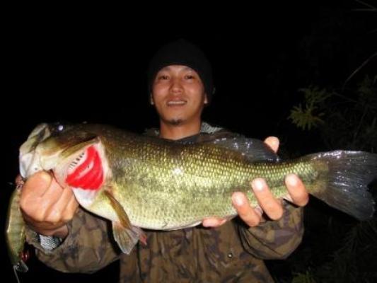 釣果報告 福島野池 デカビーツァ_d0145899_181341.jpg