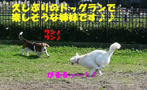 f0121712_15183811.jpg